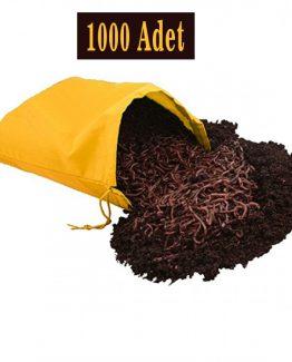 Latince Adı: Eisenia Fetida Uluslararası Adı: Red Wigglers (Red Californian Worms) Üretim Yeri: DENİZLİ
